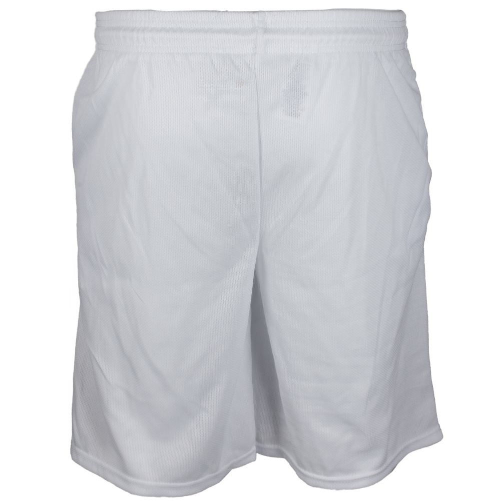 Champion-Men-039-s-Athletic-Mesh-Pocket-Gym-Basketball-Shorts-9-034-Inseam thumbnail 21